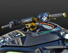 RIVA Racing - 2020 RXT-X 350 - Green/Gold - Image 10