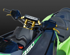 RIVA Racing - 2020 RXT-X 350 - Green/Gold - Image 11