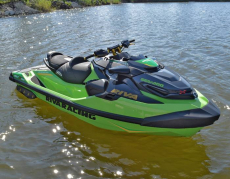 RIVA Racing - 2020 RXT-X 350 - Green/Gold - Image 14